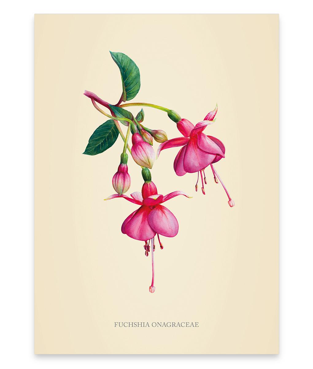 Une illustration fuchsia aquarellée, une touche végétale à votre intérieur