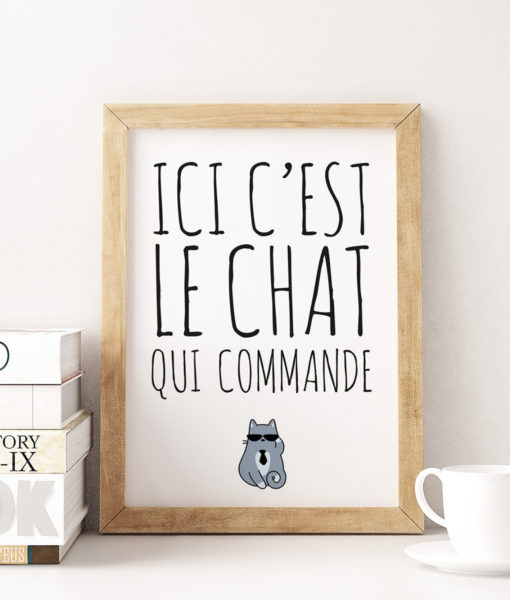 mockup-animaux-ici-chat-commande-onthewallagain